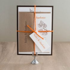 lovecycleweddinginvitations