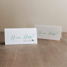 mintscripttentedplacecards