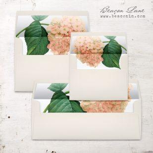 Blush Hydrangea