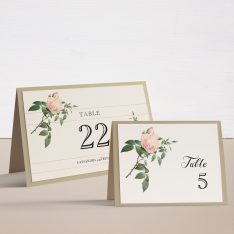 Ivory & Blush Tented Table Numbers