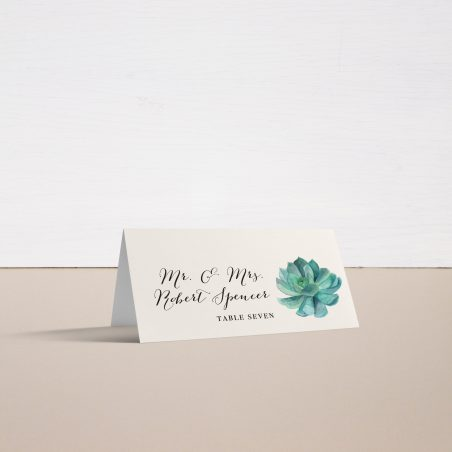 Blush Succulent Place and Escort Cards