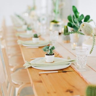 """""""Everything's coming up Cacti"""" baby shower in Austin, TX"""