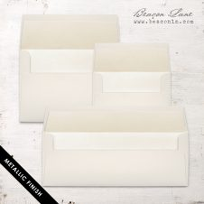 Champagne Metallic Envelope Liners