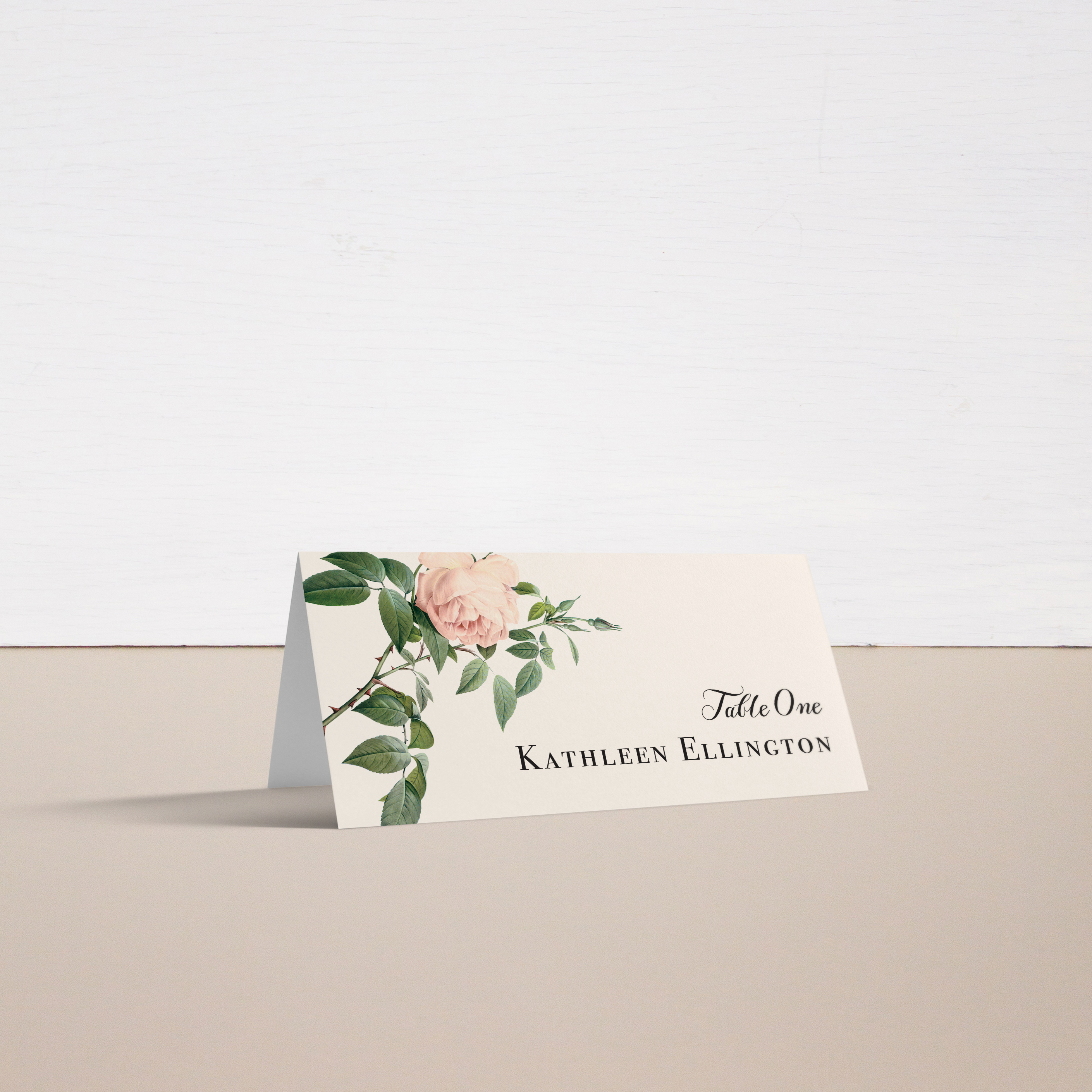 Ivory & Blush Place and Escort Cards