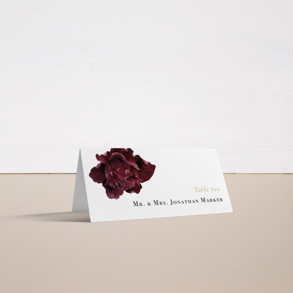 Modern Boho Place and Escort Cards