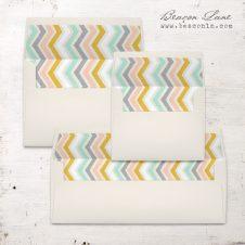 Pastel Pencil Envelope Liners