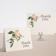Ivory & Blush Bridal Shower Thank You Cards