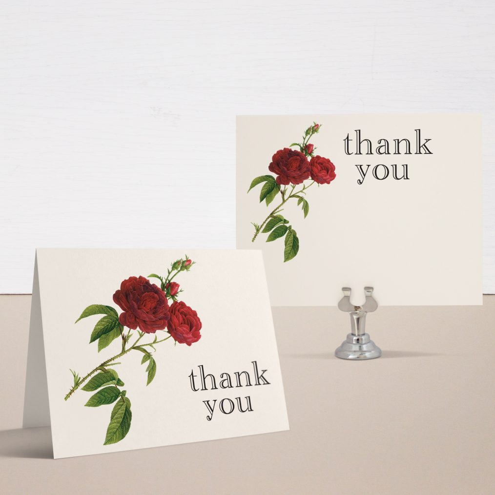Ivory & Red Thank You Cards