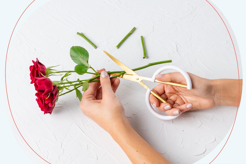 DIY Garden Blooms Flower Crown - Beacon Lane Blog