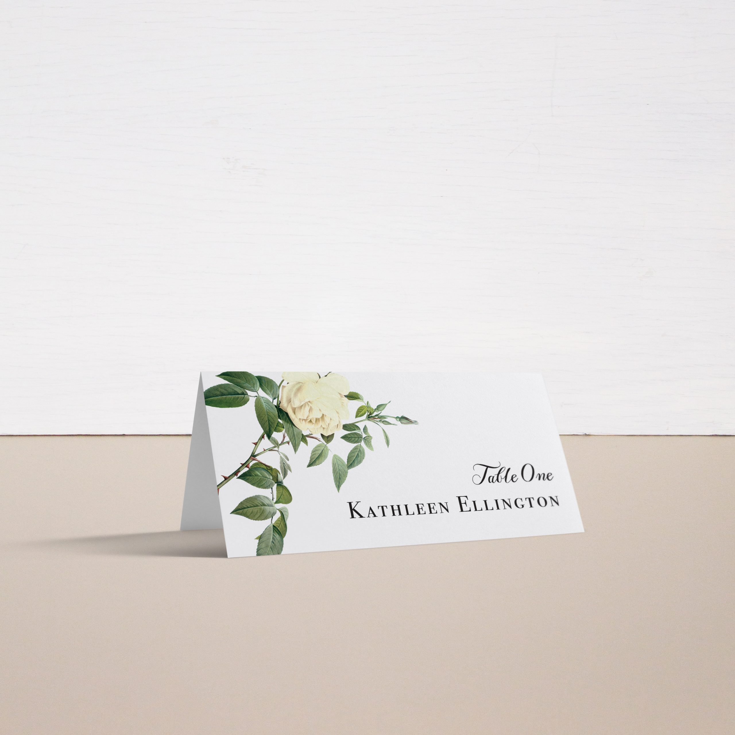 Ivory & White Place and Escort Cards