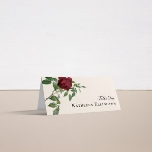 Ivory & Burgundy Place and Escort Cards